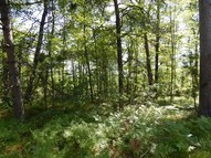 Lot 57 Deer Path Trailway Danbury WI, 54830