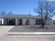 202 Bornite Tyrone NM, 88065