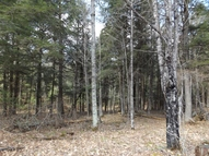 4.54 Ac Moonlight Ln Armstrong Creek WI, 54103