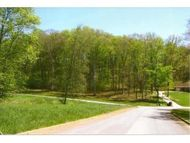 Lot 10 Chimney Top Lane Chuckey TN, 37641