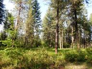 Tbd Deer Meadow Way Kettle Falls WA, 99141