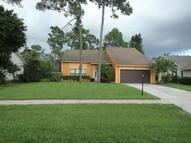 14176 Blackberry Drive Wellington FL, 33414