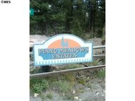 12888 Piano Meadows Dr Conifer CO, 80433