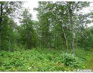 0 Loon Lake Rd Danbury WI, 54830