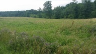 0 Cabbage Patch Road Tract 8 Altamont TN, 37301