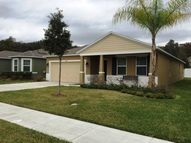 3728 Umbrella Ct Tavares FL, 32778