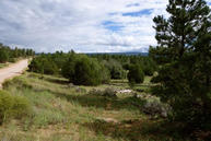 Lot 52 Timber Lake Road Ramah NM, 87321