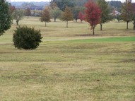 Lot 20 Wynridge Drive Troy TN, 38260