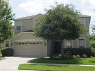 9534 Baton Rouge Lane Land O Lakes FL, 34638