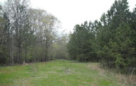24.4 Ac Dozier Road Appling GA, 30802