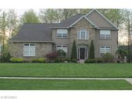 32113 Ventanas Cir Avon Lake OH, 44012