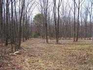 Niemchik Road - Lot #3 Hunlock Creek PA, 18621