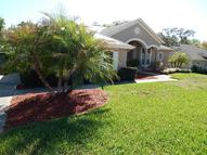 1905 Caladium Place Longwood FL, 32750