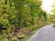9.2 Acres Connor'S Dr White Lake WI, 54491