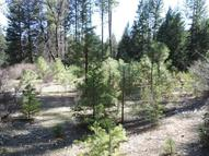 20 Acres Off Bird Flat Rd. Burney CA, 96013