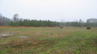Lot 1 Ethridge Rd Whitakers NC, 27891