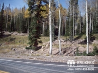 Lot 100 Ponderosa Dr. Eagle Point Resort Beaver UT, 84713