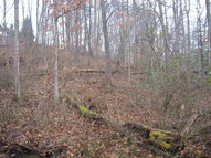 Lot 19 Spring Road Huntington WV, 25705