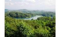 Lot 222 Beaver Cove Road Lot 0 Turtletown TN, 37391