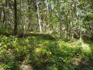 2.80 Ac. Roddy Hollow Road Gainesboro TN, 38562