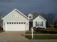 33234 Waterview Ct Avon Lake OH, 44012