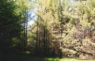 Lot #8 Cedar Ct Sister Bay WI, 54234