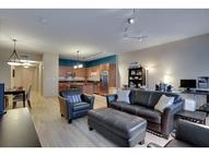215 10th Avenue S 207 Minneapolis MN, 55415
