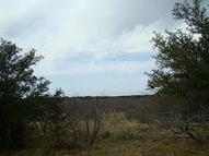 47 Ac County Road 428 Rising Star TX, 76471