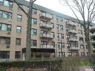 4 Birchwood Ct 3 F Mineola NY, 11501