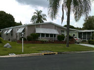161 Tiger Lily Dr Parrish FL, 34219