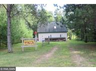 39800 Pine Island Point Trail Browerville MN, 56438