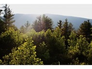 Lot #6 Maggies Run Rd East Arlington VT, 05252