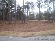Lot 49 Windwood Drive Stedman NC, 28391