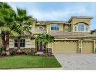 10540 Martinique Isle Drive Tampa FL, 33647