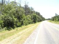 4 Acres Hwy 1486 Richards TX, 77873