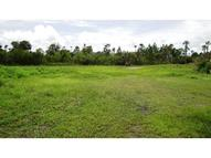 Country Road Mims FL, 32754