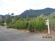 -Xxx Jack Fir Ct E Packwood WA, 98361