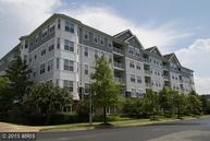 700 Cattail Cove 203 Cambridge MD, 21613