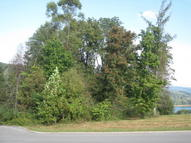 Regatta Drive, Lot 10 Andersonville TN, 37705