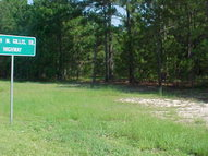 Hwy 29 South East Dublin GA, 31027