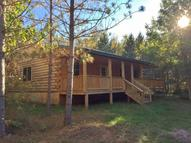 34862 Pine Tunnel Rd Willow River MN, 55795