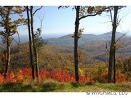 29 Cliffledge Trail Black Mountain NC, 28711