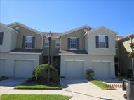 8933 Turnstone Haven Pl Tampa FL, 33619