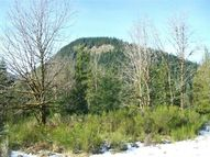 Lot 3 Price Rd Packwood WA, 98361