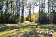 Tract #2 (45 Ac) Wallace, Sc 29596 Wallace SC, 29596