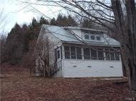 1338 Old Route 17 Livingston Manor NY, 12758