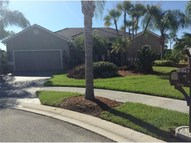 3890 Wild Orchid Court North Port FL, 34287