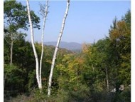 Lot 4 N. Dorchester Rd. Wentworth NH, 03282