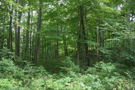 Lot 3 Phase 1 Raystown Highlands James Creek PA, 16657