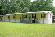 22 Park Place Terrace Fort Gaines GA, 39851